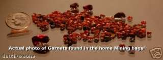 Montana Sapphire & Garnet Gravel Gem Kit Home Mine