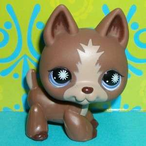Littlest Pet Shop~#867 CHOCOLATE BROWN GERMAN SHEPHERD PUPPY DOG~F144