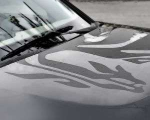 Kia Soul Dragon Body Graphics Stripes Decal 2K020 ADU00