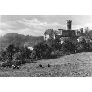 POST CARD Burg Gnandstein (Kr. Geithain)    Echt Foto (A1