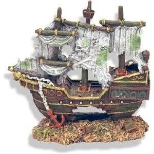 Sunken Pirate Shipwreck: Pet Supplies