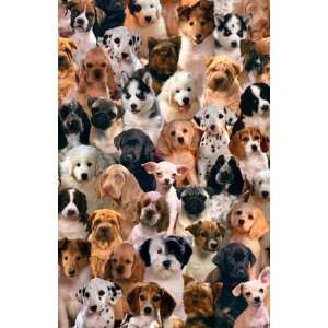 CUTE PUPPIES DOG COLLAGE PET POSTER 24X 36 #2555
