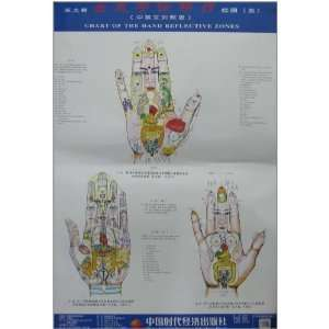 Wang holographic great hand therapy hand clinic charts (5