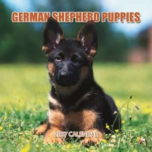 German Shepherd Puppies 2007 Mini Calendar (9781421607122