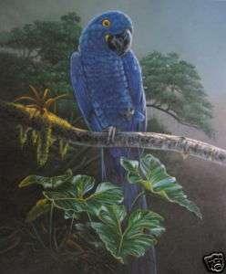 Art animal oil paintingSmall bird on canvas 24x36inch |