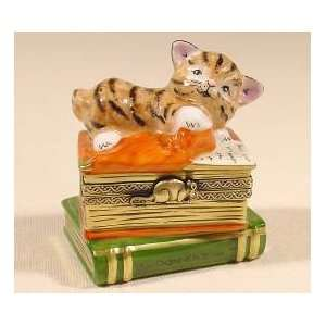 Clever Cat on Books Authentic French Limoges Box