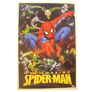 The Amazing Spiderman Spider man Poster Marvel Comics