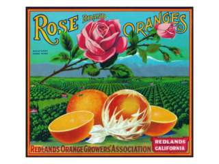 Redlands, California, Rose Brand Citrus Label Posters at AllPosters