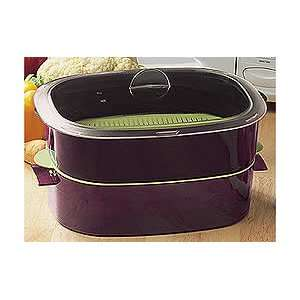Tupperware Oval Microwave Cooker & Cooking Rack