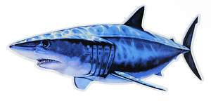 MAKO SHARK DECAL / STICKER GREAT WHITE OFFSHORE WIRE LEADER GAFF JAWS