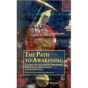 Training (9788120834408): Shamar Rinpoche & Lara Braitstein: Books