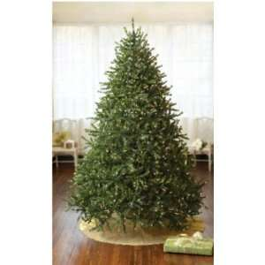 Mountain Pine Christmas Tree Clear Lights #181204