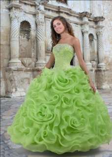 2012 New style Bridal wedding dress Quinceanera Ball Gown Custom Size