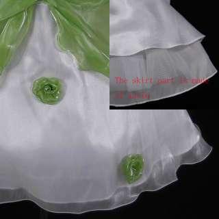 New Toddler Wedding Flower Girl Dress SZ 3/3T @