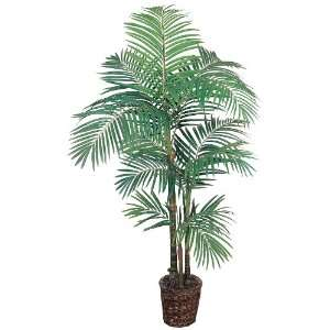 Areca Silk Palm Tree 5 1/2 ft with Wicker Basket: Patio