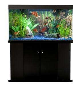 Blue Planet Paradiso 160L Corner Triangle Aquarium Fish Tank & Cabinet
