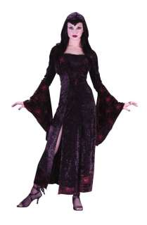 Adult Sexy Sorceress Costume   Sexy Sorceress   Sexy style long dress