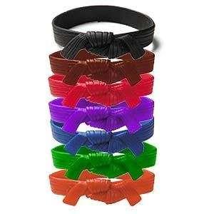 Martial Arts Rank Belt Wristband