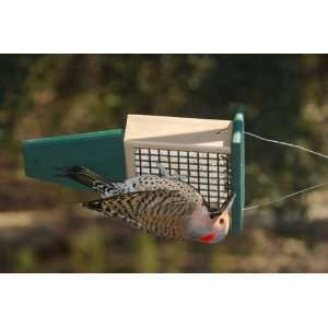 Suet Bird Feeder with Tail Prop   Recycled Plastic, Hunter